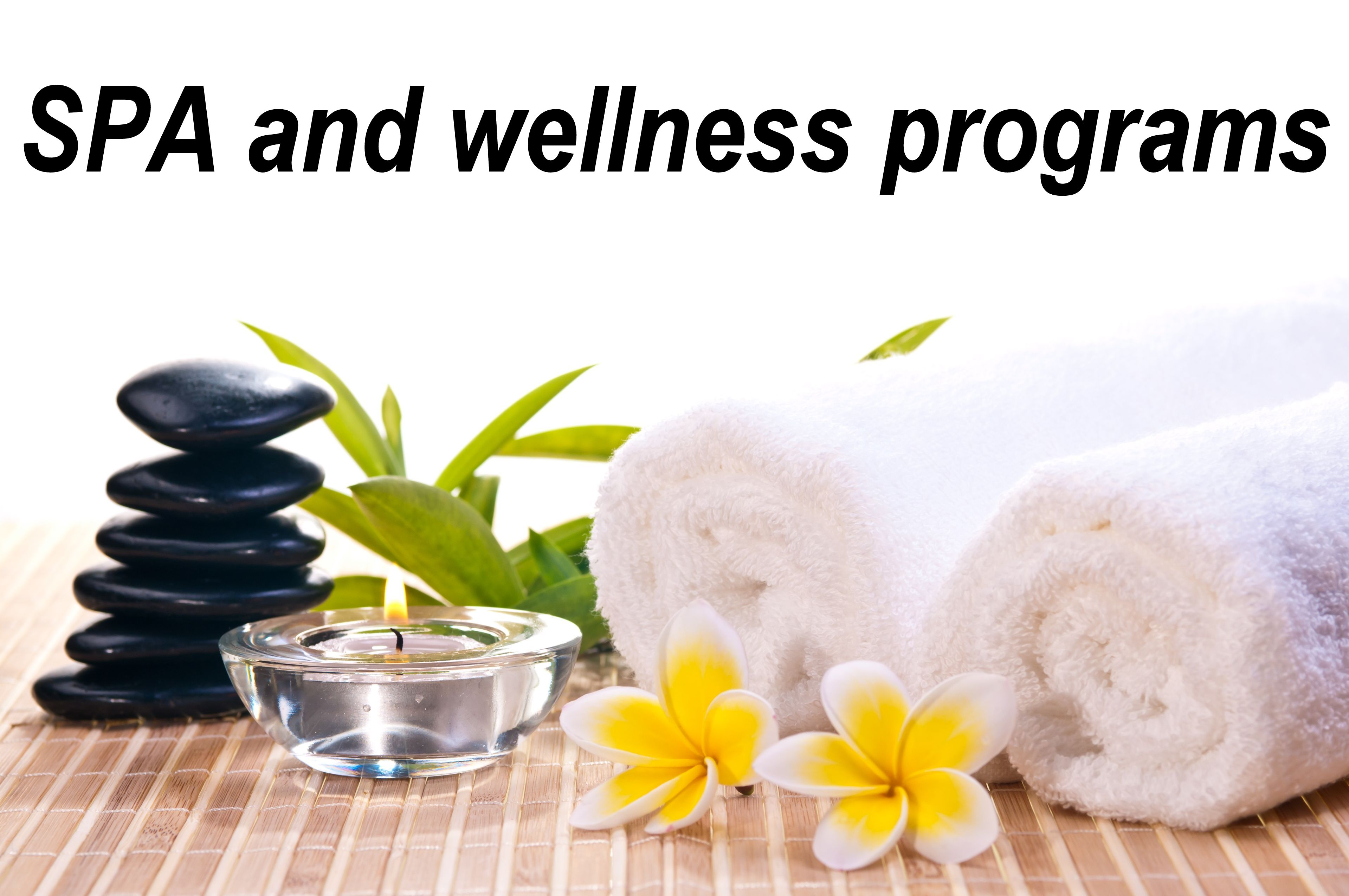 Wellness and spa packages btcompany for Health spa vacation packages